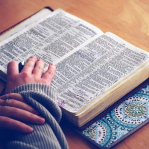 Seminar Registration:  Studying the Bible for ALL IT IS WORTH